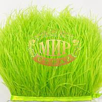 Тесьма страусиная Цвет Tropic Lime Цена за  0.5м