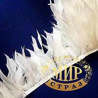 Тесьма перьевая из стриженых гусиных перьев Цвет White Цена за 0.5м