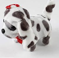 Интерактивная мягкая игрушка Собачка EL1074-1 (1474765)