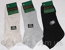 """Шкарпетки бавовняні """"Житомир"""" сітка укорочені"""
