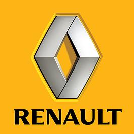 Новые поступления Renault