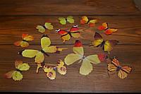 Бабочки для декора интерьера желтые