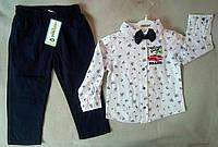 Нарядный детский костюм для мальчиков 2-5 лет, рубашка с длинным рукавом с бабочкой, Турция, оптом