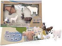 Обучающий игровой набор Wenno с QR-картой - Животные Арктики