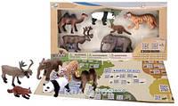 Обучающий игровой набор Wenno с QR-картой - Животные Азии