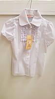 Детская школьная  блузка для девочки Веснушка 128