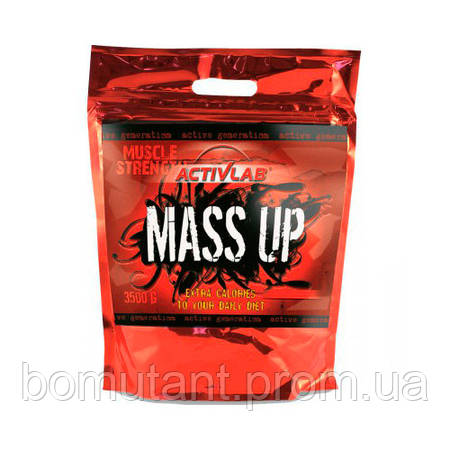 Mass Up 3,5 кг forest fruit Activlab