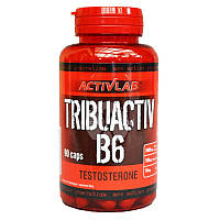 Tribuactiv B6 90 капсул Activlab