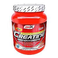Glutamine Micro Powder 500 гр AMIX