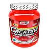 Creatine Monohydrate 1 кг AMIX