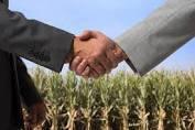Укладення договору оренди землі: основні моменти до уваги