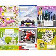 Тетрадь цветная 12 листов, линия «Мрії» «mix»
