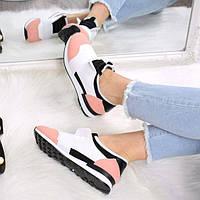 Кроссовки женские под Balenciaga белый + пудра 3526, спортивная обувь