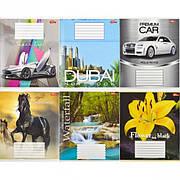 Тетрадь цветная 36 листов, клетка «Мрії» «mix»