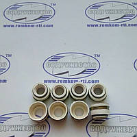 Набор сальников клапанов (8 шт.) белая резина, Д-240, МТЗ-80