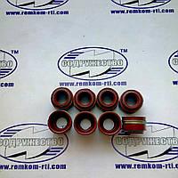 Набор сальников клапанов (8 шт.) красная резина, Д-240, МТЗ-80