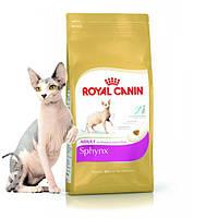 Сухой корм для взрослых котов сфинкс Royal Canin Sphynx Adult, 10 кг