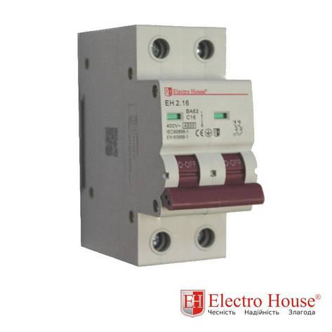 Автомат двухполюсный 16A Electro House, фото 2