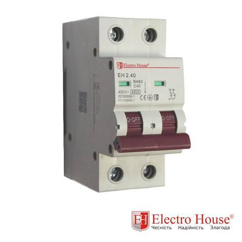 Автомат двухполюсный 40A Electro House, фото 2