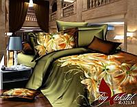 Комплект постельного белья R32134 (TAG-400е) евро