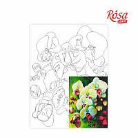 Полотно на картоні з контуром «Натюрморт №18», 30*40, бавовна, акрил, ROSA START