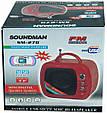 Портативная FM MP3 колонка Soundman SM-270, фото 3