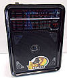 Портативный радиоприемник Golon RX-9100, фото 2