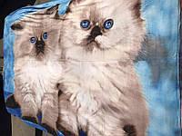 Милый плед с котятами