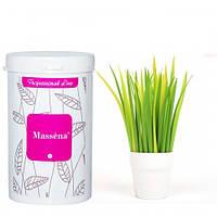 Massena Альгинатная маска хлорофилловая (для купирозной жирной кожи, успокваивает) 300 гр