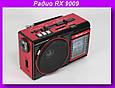 Радио RX 9009 c led фонариком,Компактный радио-фонарь Golon, фото 5