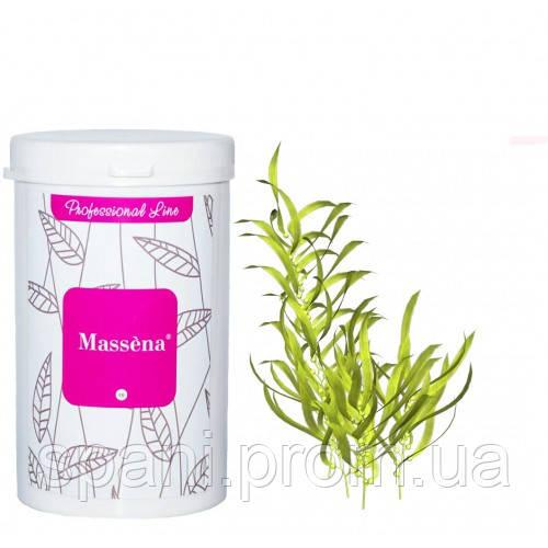 Massena Альгинатная маска Полупрозрачная с водорослями 300 гр