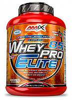 Whey Pro Elite 85% 2,3 кг forest fruit AMIX