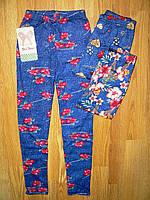 Лосины  для девочек оптом, Nice Wear , 4-12 рр., фото 1