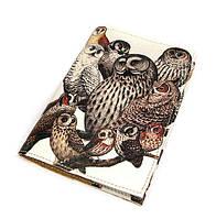 Модная обложка на паспорт Совы Семья