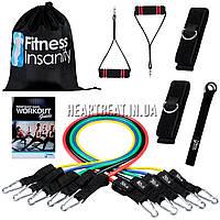 Комплект трубчатых эспандеров Fitness Insanity (5 шт, сумка, ручки и аксессуары)