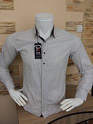 Рубашка Pierre Chapini