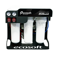 Фильтр обратного осмоса Ecosoft RObust 1000 original