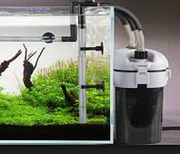 Внешний или внутренний фильтр для аквариума?