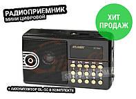 Мини колонка радиоприемник с флешкой ФМ радио ATLANFA AT-R20