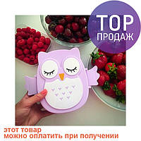Детский ланч бокс Bento Совушка Фиолетовый / посуда для детей