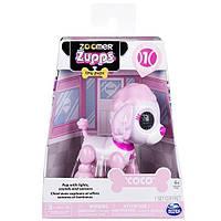 Интерактивная игрушка Spin Master Zoomer Zupps Tiny PupsCocoPoodle Щенок Заппи Пудель Коко