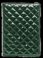 Ежедневник датированный Ежедневник датированый DONNA A5  336 стр Buromax BM.2154 (BM.2154-01(черный) x 123406)