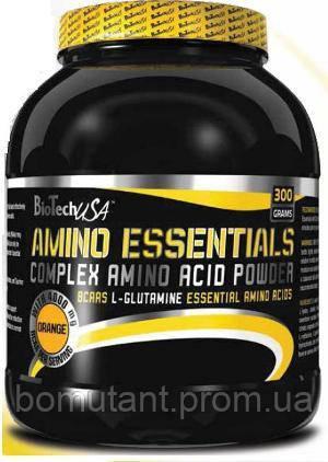 Amino Essentials 300 гр дыня BioTech