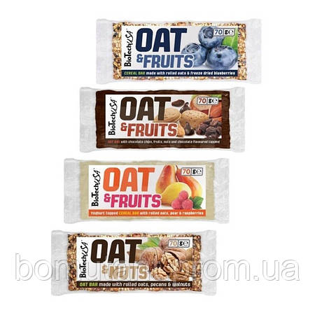 OAT and Fruits 70 гр  шоколадная крошка BioTech