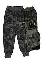 Спортивные брюки для мальчиков оптом ,F&D, 4-12 рр., арт. WX-2651