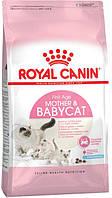 Корм для котят с 1 до 4 месяцев Royal Canin Babycat
