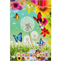 Раскраска А5 с наклейками «Бабочки» GDC-034