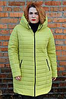Куртка зимняя Горизонт оливка
