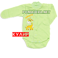 Детский боди с длинным закрытым рукавом р. 62 ткань КУЛИР 100% тонкий хлопок ТМ Алекс 3148 Зеленый В