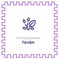 Спецпредложение Профи от Prom.ua